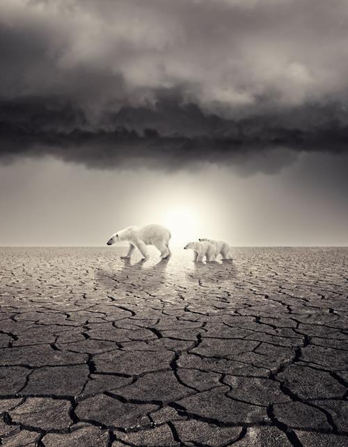 ocieplenie-klimatu-plakaty- (16)