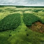33 plakaty poruszające problem globalnego ocieplenia.