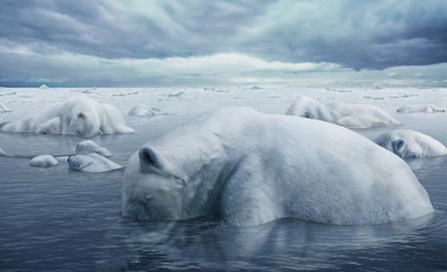 ocieplenie-klimatu-plakaty- (5)