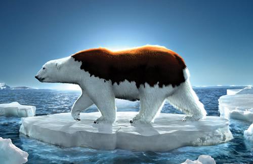 ocieplenie-klimatu-plakaty- (6)